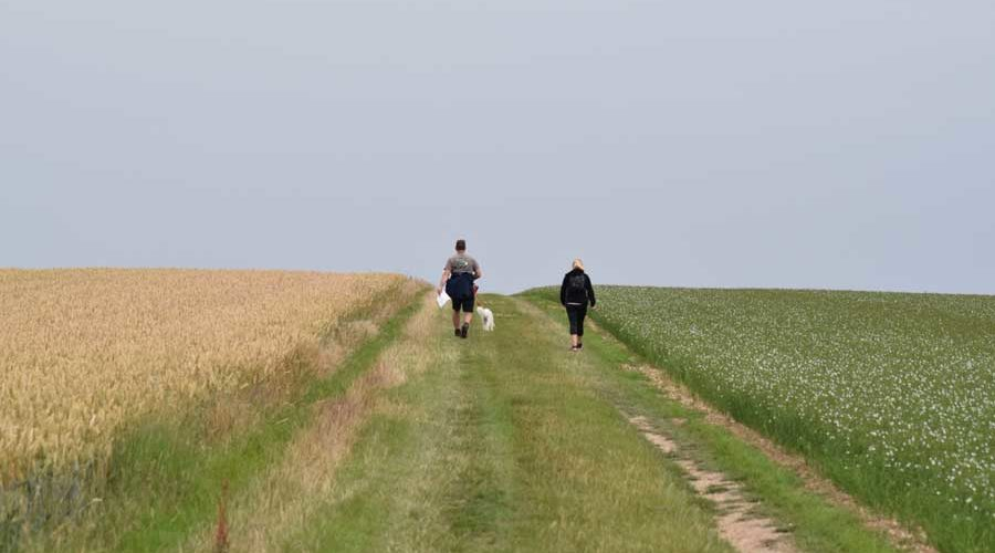 Two people walking in the wolds