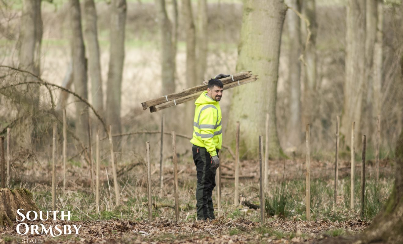 Man with Wooden posts in the Lincolnshire Wolds