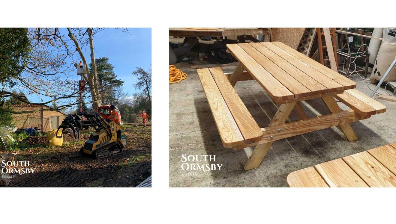 tree surgeon & new bench