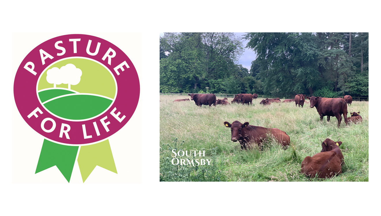 Pasture for Life logo with Lincoln Reds