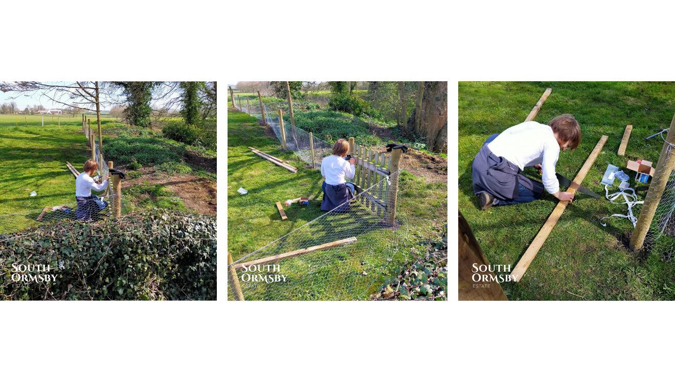 Toby gardening