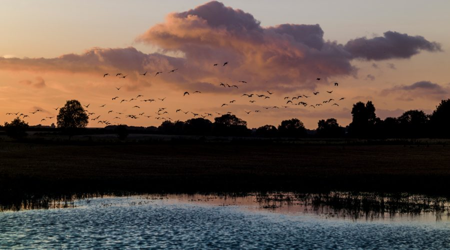Lincolnshire landscape