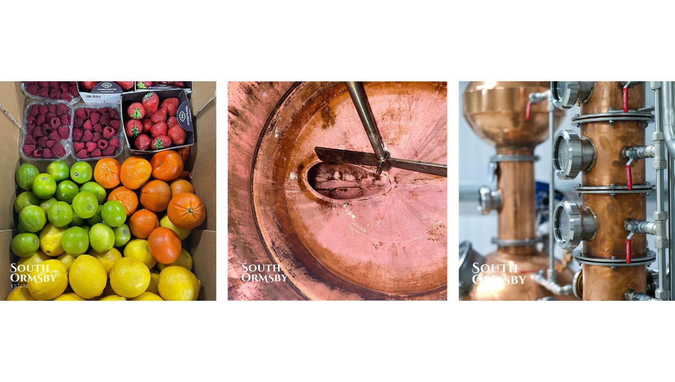 fruit & gin still