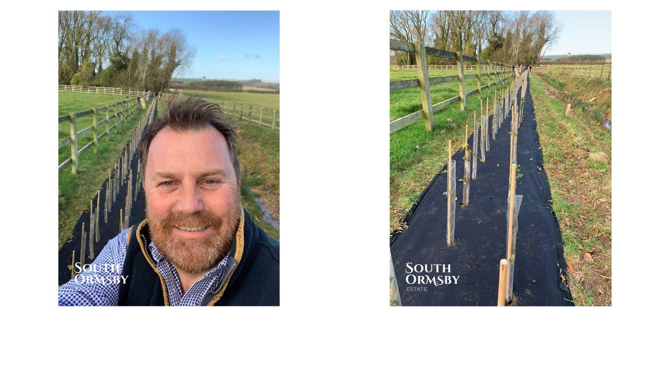 Paul Barnes preparing new hedgerow