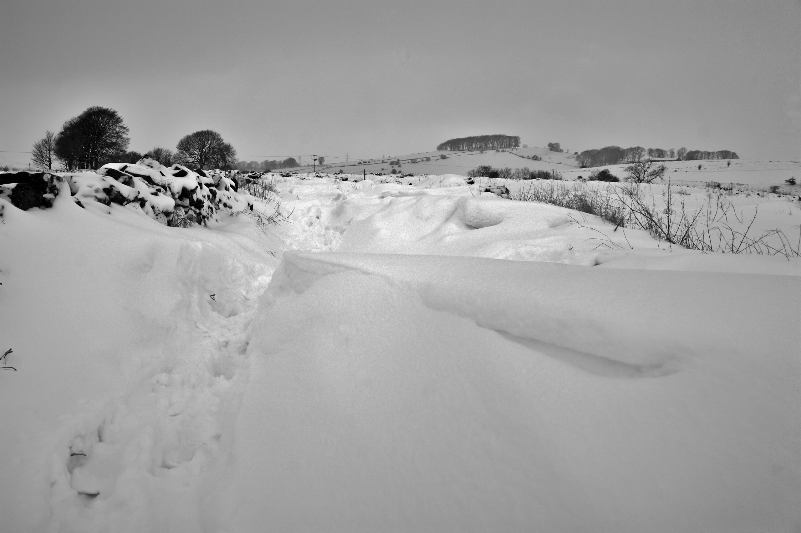 Snowdrift by Simon Harrod via Flickr CC