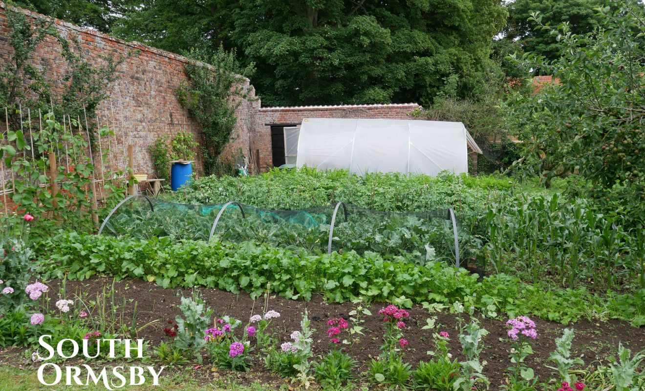 The walled garden crop